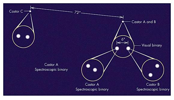 The Castor System