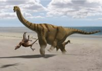 10 Most Dangerous Dinosaurs in the world